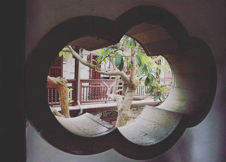 扬州之旅~何园 �� #扬州 #何园 #公园 #美丽 #植被 #绿色 #Yangzhou #trip #garden #sonyalpha #green #china #beautiful #wonderful_places #amazing_places #travelchina #travel #explore #fun #hole #tree #treeoflife #cina #viaggiare #cloud #nuvola http://tipsrazzi.com/ipost/1508666387660578534/?code=BTv3BYZFJ7m
