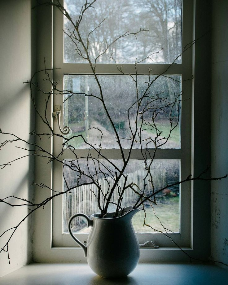 Simple pleasure. A white jug and twisted twigs and a deep windowsill. True @natureinthehome. This window belongs to @harpcottage... I've written about our stay there over on the blog if you fancy a read