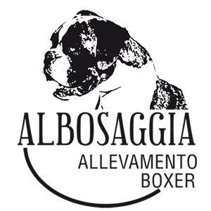 http://www.allevamentodialbosaggia.it/