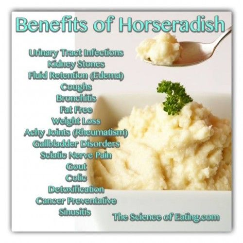 Benefits Of Horseradish