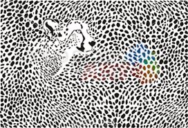 Vector black and white cheetah hide patterns and camouflage horizontal background