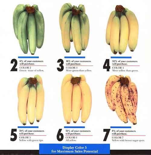 Biology green fruit ripening experiment