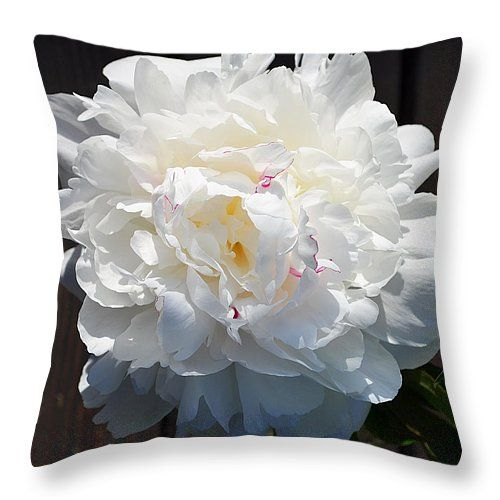 Pillow with white flower