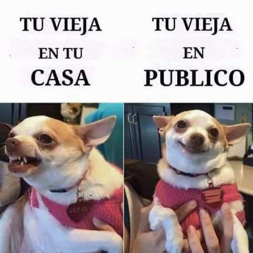 Si estas buscando algunos de los mejores memes chistosos en español 2016, genial, estas de suerte porque aqui siempre tenemos los memes mas graciosos. VER