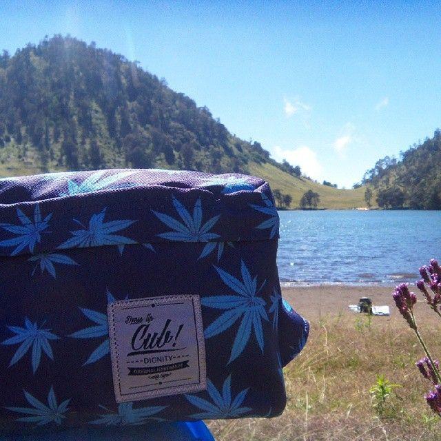 Our journey at Ranu Kumbolo. Mt Semeru, East Java. The highest mount in java, #travelingwithcub #cub #cubtraveler #travellife #semeru #waistbag #marijuana #bags #products #localbrand #exploreindonesia #outdoors #marijuana