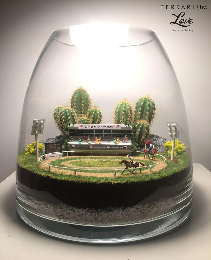 Oltre 25 idee originali per mini giardini su pinterest for Giardini in miniatura giapponesi