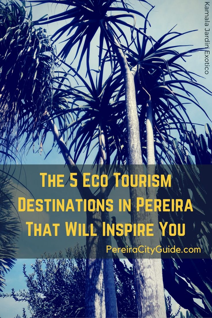 Pereira, Colombia. 5 Eco Tourism Destinations to show you the beauty of nature, educate you about the Coffee Region and help support the local economy!