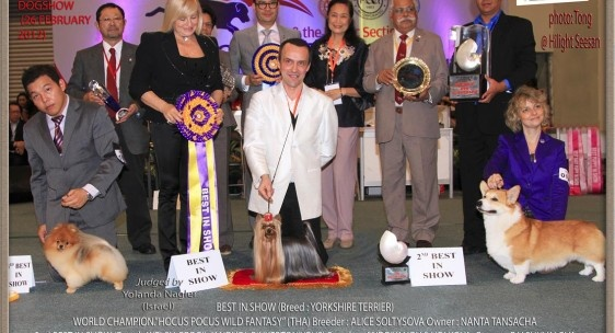 FCI Asia and the Pacific Dog Show - http://worldog.com/fci-asia-and-the-pacific-dog-show