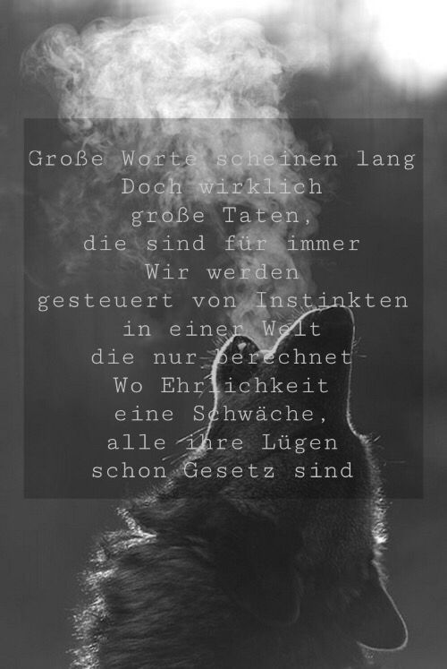 Kontra K - Wölfe | quotes | Pinterest