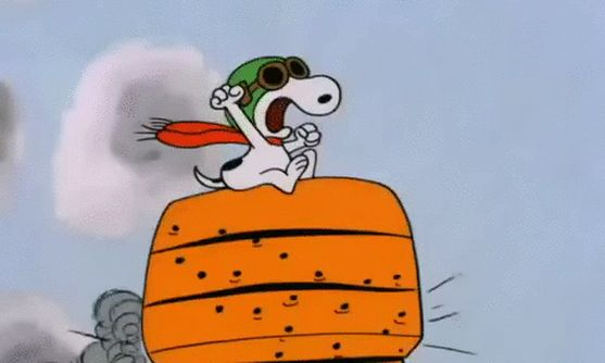 80 best images about charles m schulz flying ace