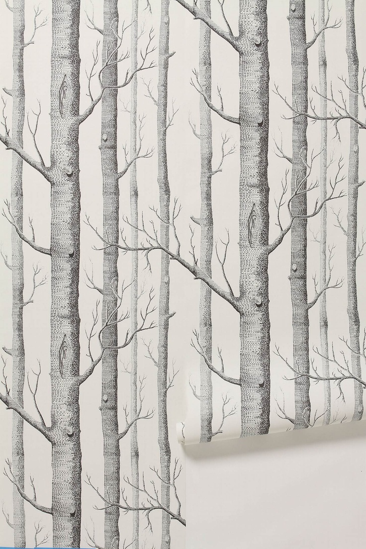 Woods Wallpaper, $198.00 <3 Still fresh, despite its ubiquity–I dream of it in my foyer... part of a Narnian fantasy... :P