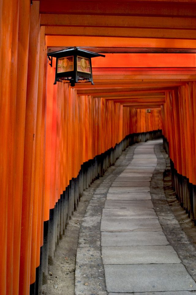 Lantern and tori gates - Fushimi Inari Shrine, Kyoto; May 2004 - jeffrey laitila (sushicam).  Seen in film 'Memoirs of a Geisha'