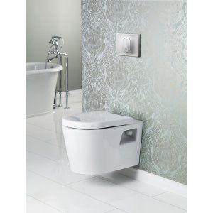 The Matrix Wall Hung Toilet Is Marketed As Ada Compliant And Has An Adjustable Height Wall Control Panel