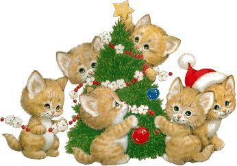 chats décorant le sapin