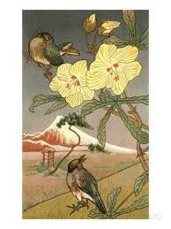 Risultati immagini per acquerelli giapponesi