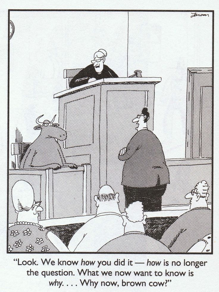Image result for woman giving testimony in court cartoon
