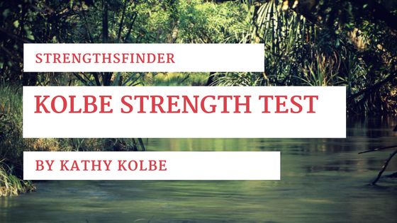 Kolbe A™ Index Sample Test and Results