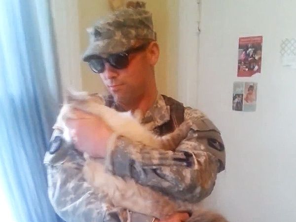 Excited Cat Welcomes Home Its Soldier Owner: Video