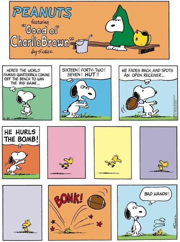 peanuts comic strip 1 5 08