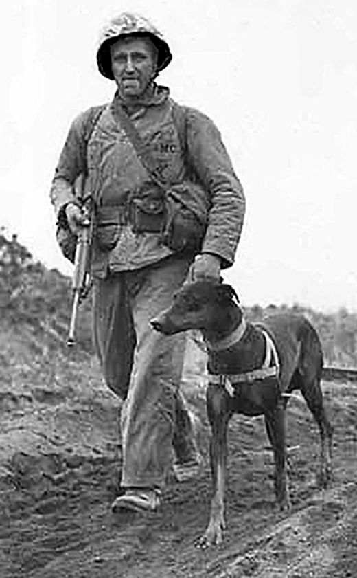 13 Mar 42: The US Army creates the K-9 Corps to train dogs to preform sentry duty at supply depots. Thirty-two breeds of dogs were initially accepted for training but by 1944 that list had been reduced to seven: German Shepherds, Doberman Pinschers, Belgian Sheep Dogs, Siberian huskies, farm collies, Eskimo dogs, and Malamutes. More: http://scanningwwii.com/a?d=0313&s=420313 #WWII