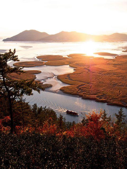 Sunset - Suncheon Bay, South Korea