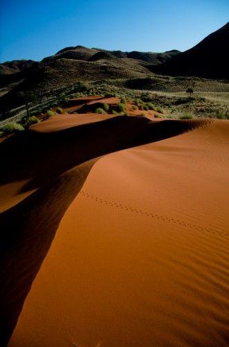 Namib Desert - place to start reading
