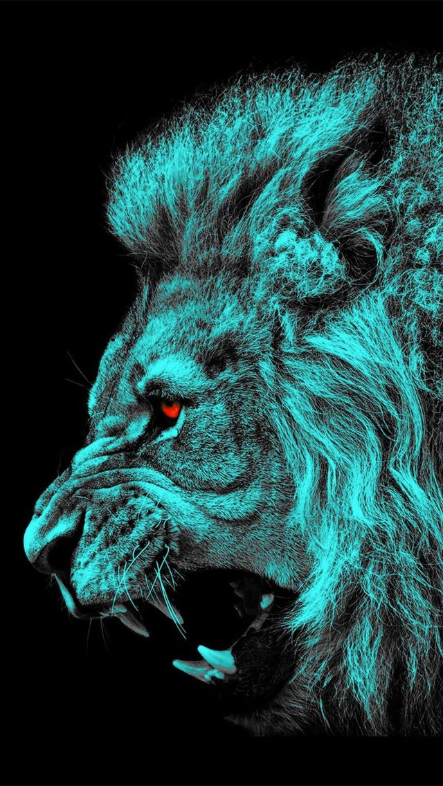 iPhone 5 Wallpapers Photo lion, blue