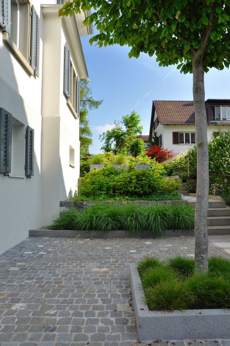 Die besten 25 eisenholzbaum ideen auf pinterest tuin gartenarchitektur und gartenentw rfe - Gartengestaltung gunstig ...