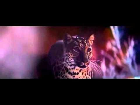 Big cat little cat - Whiskas TV Commercial