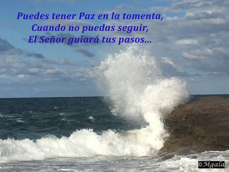 """Puedes tener paz en la tormenta. Cuando no puedas seguir, el Señor guiará tus pasos.  """"Jehová es mi luz y mi salvación; ¿de quién temeré? Jehová es la fortaleza de mi vida; ¿de quién he de atemorizarme?"""" (Salmos 27:1)  http://iglesiapueblonuevo.es/index.php?query=Salmos+27:1&enbiblia=1  #VersiculosParaTodos #Versiculo #BibleVerse #Biblia #PazEnLaTormenta #Camino #FilosofiaDeVida #MisProblemasSonSusProblemas #Oracion"""