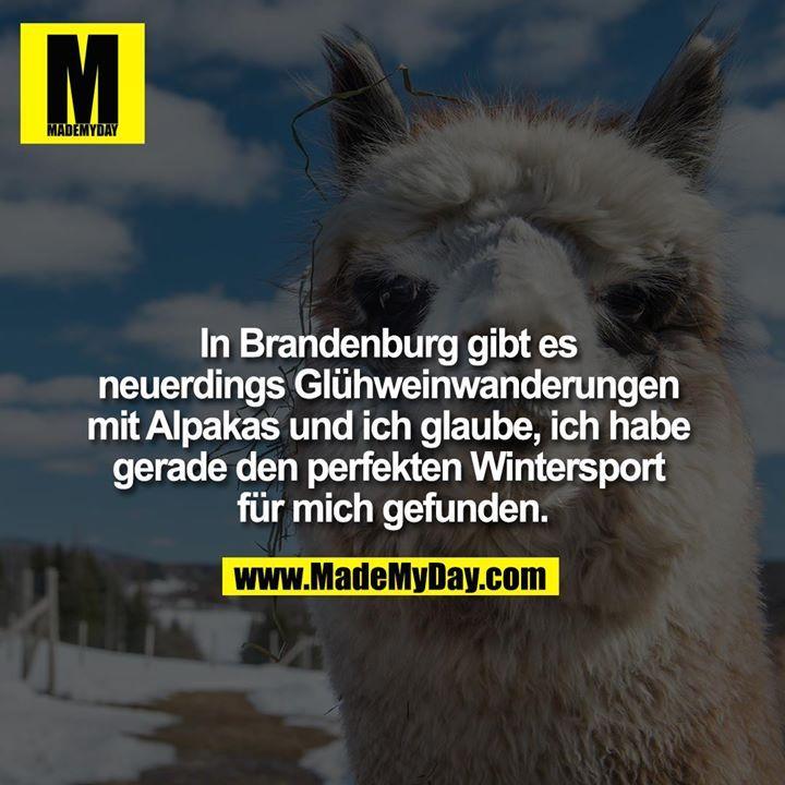 Travel Ideas Bild Von Xandre Groenewald Witzige Spruche Spruche