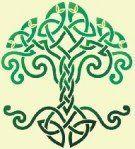 Irish Tattoo. Tree of life. Officially called the dara knot.