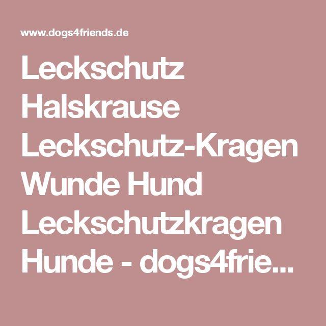 Leckschutz Halskrause Leckschutz-Kragen Wunde Hund Leckschutzkragen Hunde - dogs4friends.de