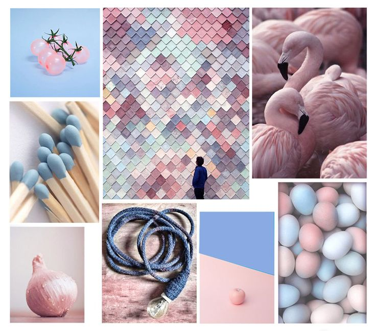 Pantone 2016 colours of the year: rose quartz and serenity