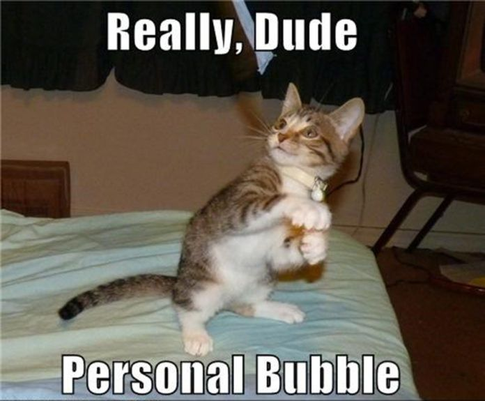 Respect The Bubble 33 Memes For Everyone With A Personal Space Issues Part 2 Funny Cat Pictures Memes Funny Animals