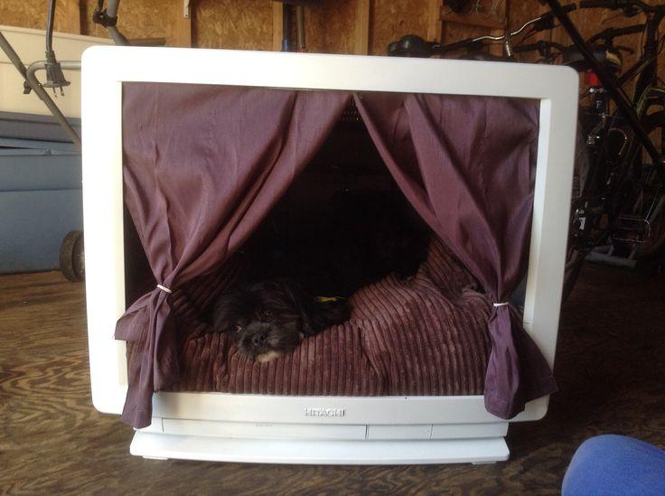 r cup ration d 39 une vieille t l pour en faire une petite maison de repos pour mon chien ador. Black Bedroom Furniture Sets. Home Design Ideas