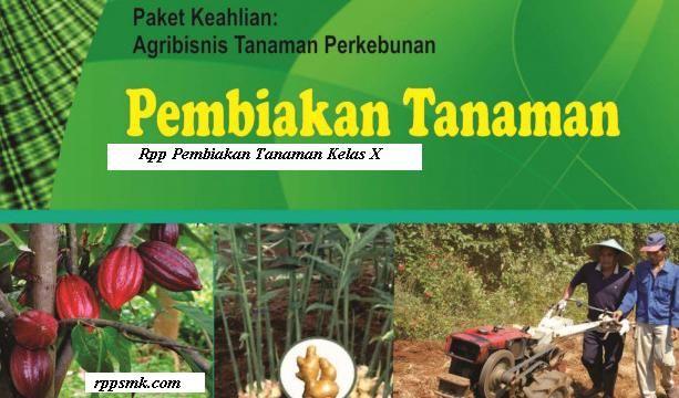 Download Rpp Pembiakan Tanaman Smk Tanaman Kurikulum
