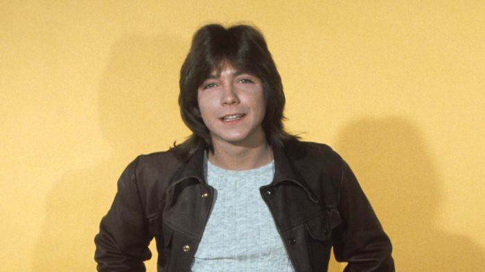 David Cassidy, pop culture idol of the 1970s, died Tuesday in a Florida hospital. The musician and actor was 67. His publicist JoAnn Geffen confirmed his death, with a statement from his family. &#…