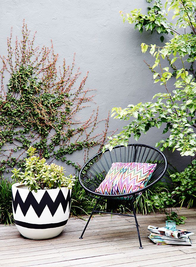 pop of color and black and white graphic planter.