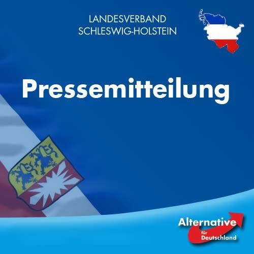 """AfD Schleswig-Holstein begrüßt Grenzkontrollen: """"Dänemark und Schweden zeigen, wie es geht."""""""