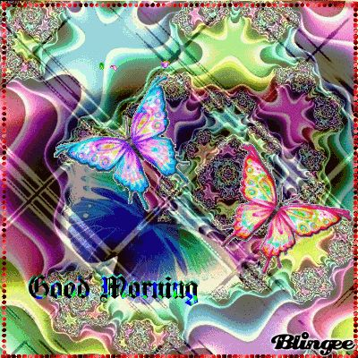 good morning butterfly - Google zoeken