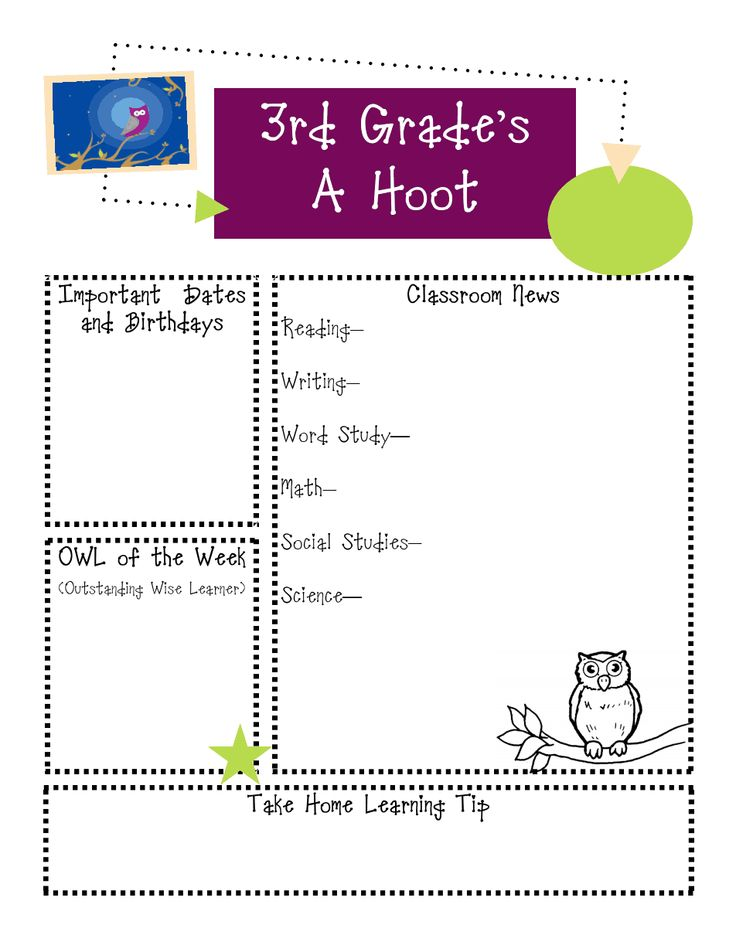 Best  Owl Newsletter Ideas Only On   Owl Classroom
