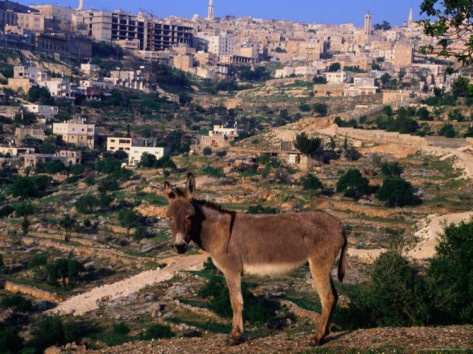 Bethlehem, Israel  it's beautiful over in the Holy Land's , can't wait to see it again!