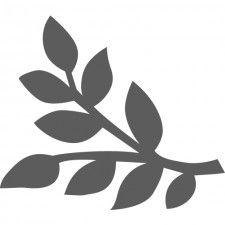 Mask branche