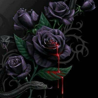 17 best ideas about Bleeding Rose on Pinterest | Blood, Wonderland ...