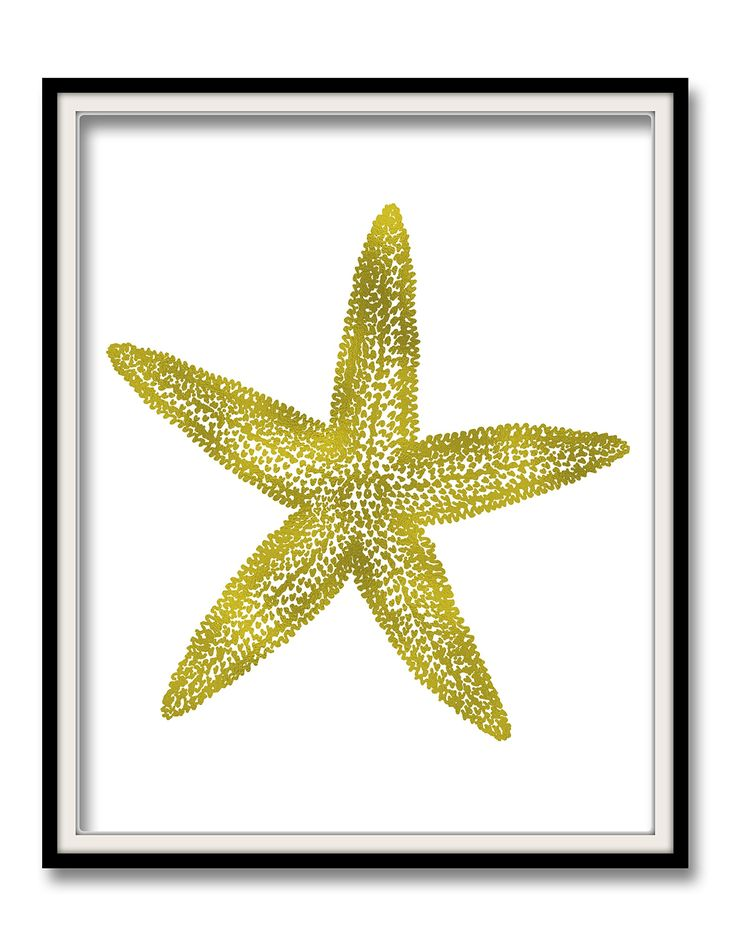Gold Starfish Wall Decor : Best ideas about starfish decorations on