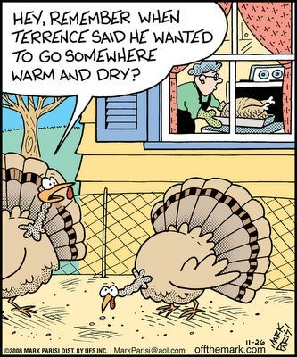 15 Funny Turkey Jokes In Pictures
