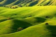 Costa Country, California