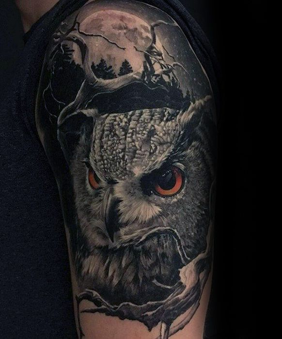 50 Owl Sleeve Tattoos For Men Nocturnal Bird Design Ideas