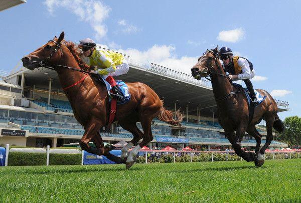 Criterion Photos - Melbourne Racing - Zimbio